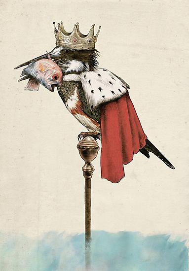 King Fisher by Eric Fan