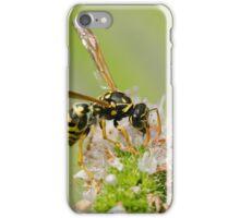 Insatiable iPhone Case/Skin