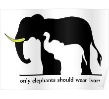 Only Elephants Should Wear Ivory (White Background) Poster