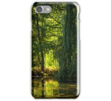 The Quiet Pond iPhone Case/Skin