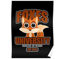 Foxes University  2 Poster