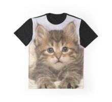 Cute Siberian kitten lying down Graphic T-Shirt