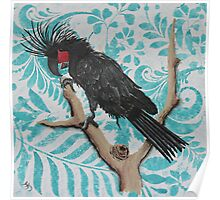 BLACK PALM COCKATOO Poster