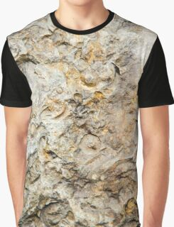 Fossil Rock Graphic T-Shirt