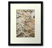 Fossil Rock Framed Print