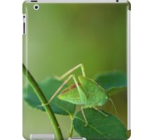 Young Bush-Cricket 1 iPad Case/Skin