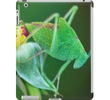 Young Bush-Cricket 2 iPad Case/Skin