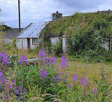 Abandoned Homestead...........................Ireland Sticker