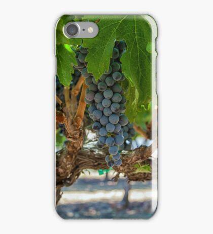 Grapes 1 iPhone Case/Skin