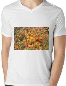 Autumn's Paint Brush Mens V-Neck T-Shirt