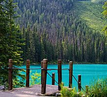 Emerald Lake by Lucinda Walter