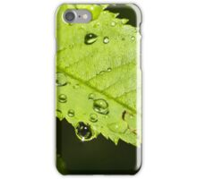 Droplets on a leaf iPhone Case/Skin