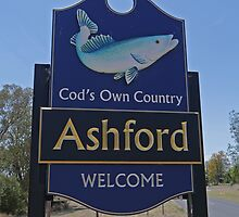 Welcome to Ashford. by Margaret  Hyde