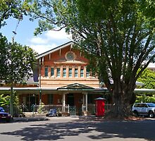 Court House, Grafton,  NSW, Australia by Margaret  Hyde