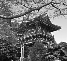 Pagoda, Japanese Tea Garden, San Francisco, CA by Scott Johnson