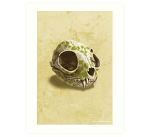 cat skull painted with wasabi flowers Art Print