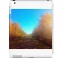 small town country road iPad Case/Skin