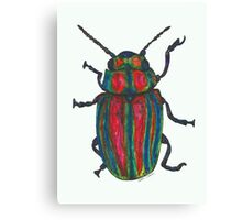 Rosemary Beetle Canvas Print