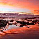 Speccy sunset  by Eunice Atkins