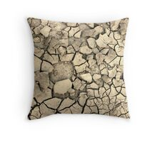 Drought Stricken Earth - Phone Cases, Pillows and More Throw Pillow