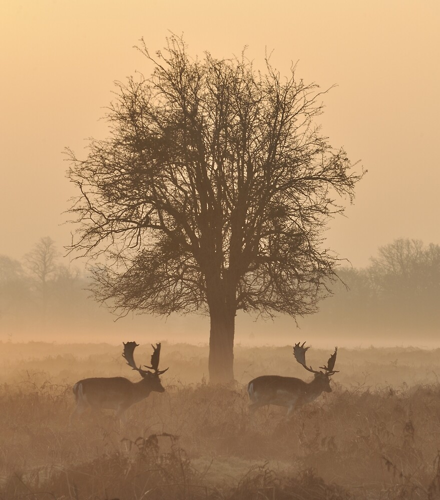 Just the Two of Us by Kasia Nowak