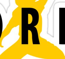 Air Jordy - Green Bay Packers Jordy Nelson Sticker
