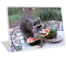 Sweet Summertime   Stanleigh and Friends Laptop Skin