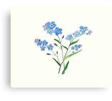 blue forget me not 2 Canvas Print