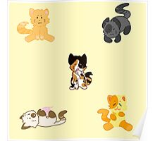 Kitty Cat Misc. Products Poster