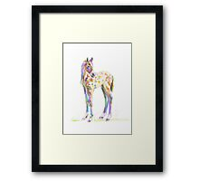 Foal Paint products Framed Print