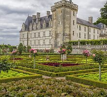 Chateau de Villandry, Loire Valley, France by Elaine Teague