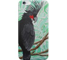 BLACK PALM COCKATOO iPhone Case/Skin