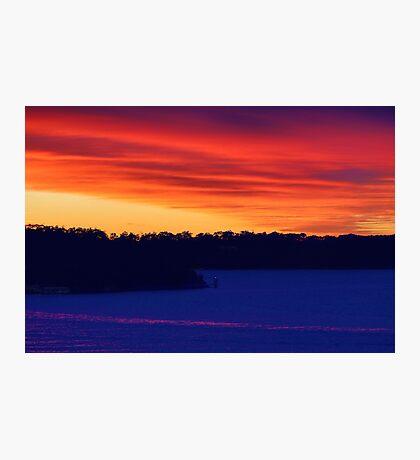 Pink Stripe Photographic Print