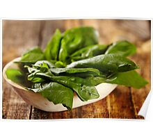 Basil leaves Poster