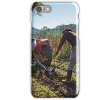 Potatoes harvest iPhone Case/Skin