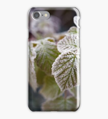 Frozen rasberry leaves iPhone Case/Skin