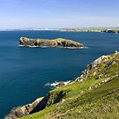 The Cornish coastline by Steve plowman