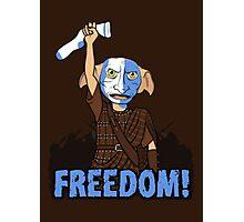 Harry Potter - Freedom Photographic Print