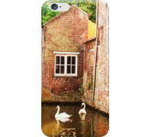Swans iPhone Case/Skin