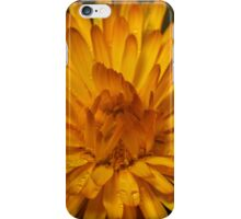 Calendula marigold iPhone Case/Skin