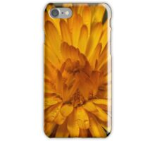 Calendula marigold iPhone Case/Skin