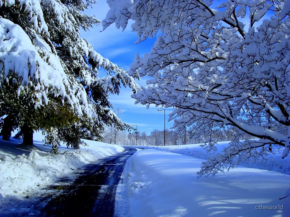 Winter Road   ^ by ctheworld