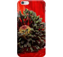 close up red poppy iPhone Case/Skin