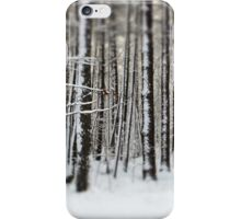 Snowy Woods iPhone Case/Skin