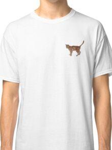 Cute fuzzy ginger cat Classic T-Shirt