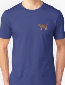 Cute fuzzy ginger cat Unisex T-Shirt