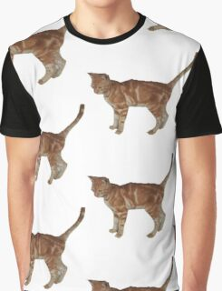 Cute fuzzy ginger cat Graphic T-Shirt