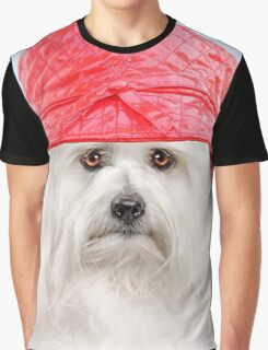 Coton de Tulear dog wearing red hat Graphic T-Shirt