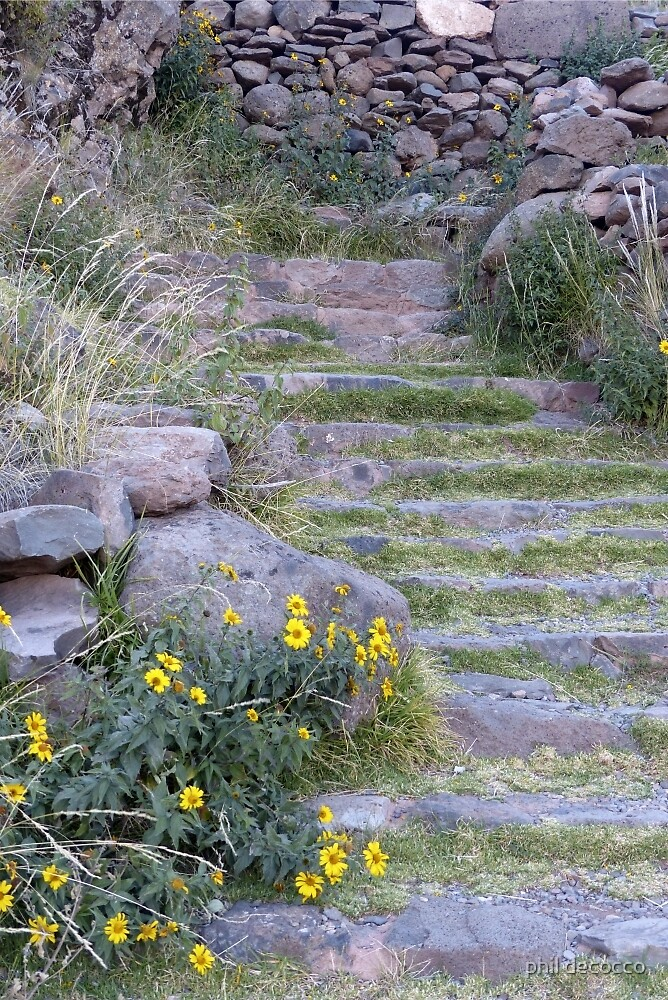 Steps To Taquille by phil decocco