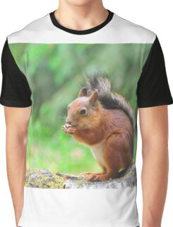 Cute squirrel eating a nut Graphic T-Shirt
